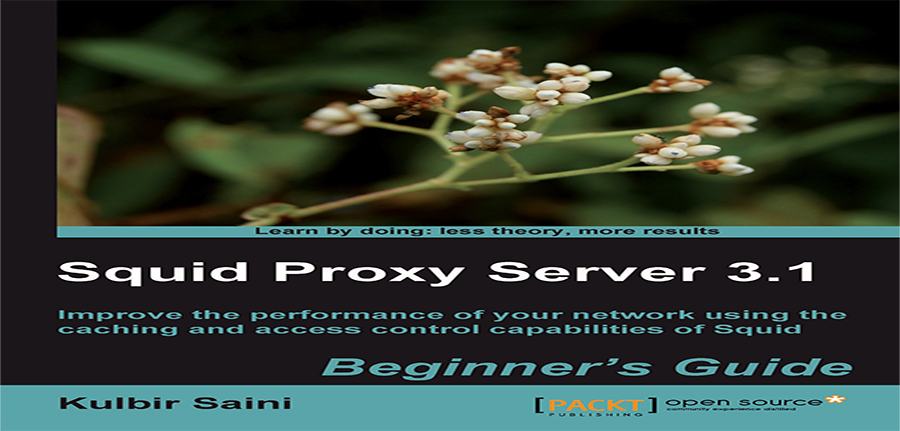 Squid Proxy Server 3.1 Beginners Guide
